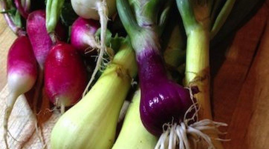 Farm to Table: This Week's Organic Picks