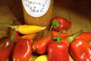 My homemade HOT sauce- freshly grown organic peppers