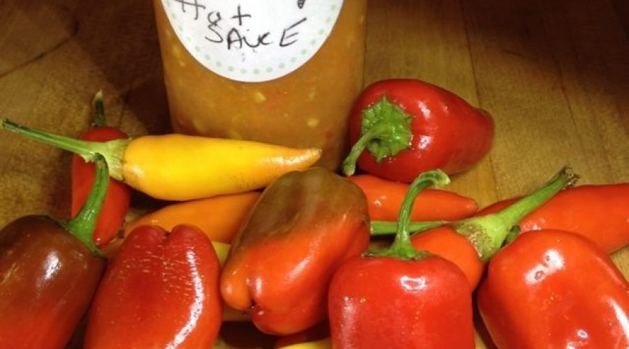 My homemade HOT sauce- freshly grown organic peppers